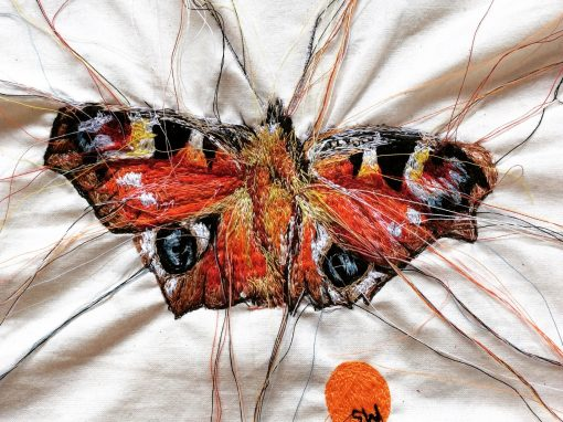 Moths And Butterfly's